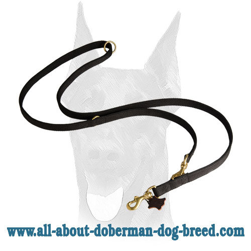 Durable stitched nylon Doberman leash