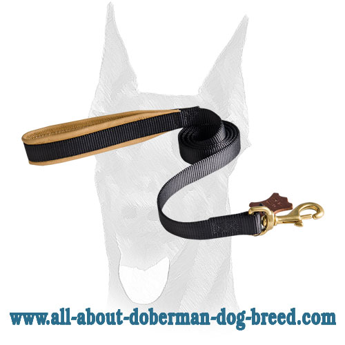 Durable stitched nylon leash for Doberman