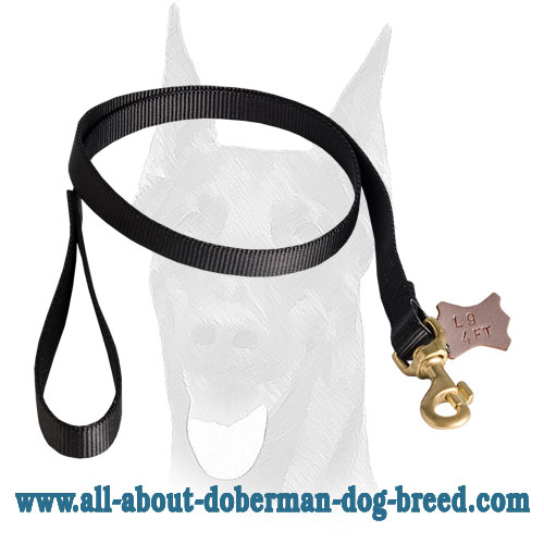 Doberman nylon leash with soft durable handle