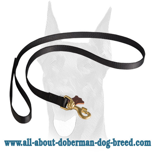 Nylon Doberman leash with floating O-ring