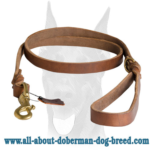 Soft comfy handle for Doberman leash