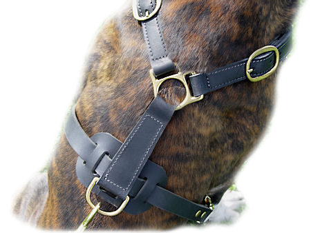 Classic Leather Harness For Big Dogs-Doberman harness