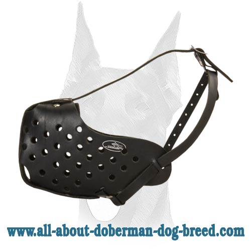 Completely safe adjustable Doberman muzzle