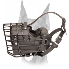 Completely dog safe winter wire muzzle for Doberman