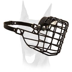 Wire Basket Doberman Muzzle