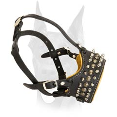 Spiked and studded Doberman muzzle