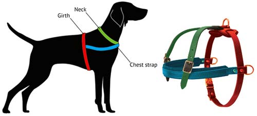 Similar Latigo Leather H-Style Dog Harness for Doberman [H5###1036