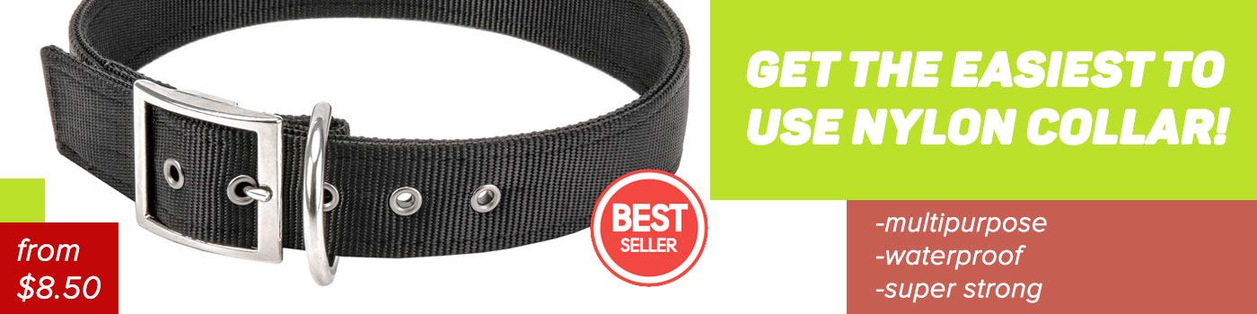 Nylon Doberman collar