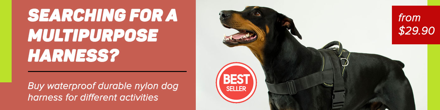 Doberman nylon dog harness