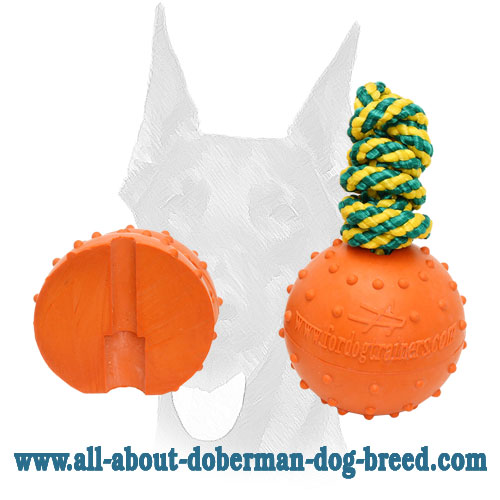 Bright looking rubber ball for Doberman