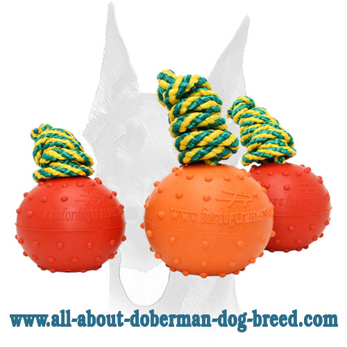 Rubber balls with doted surface for Doberman