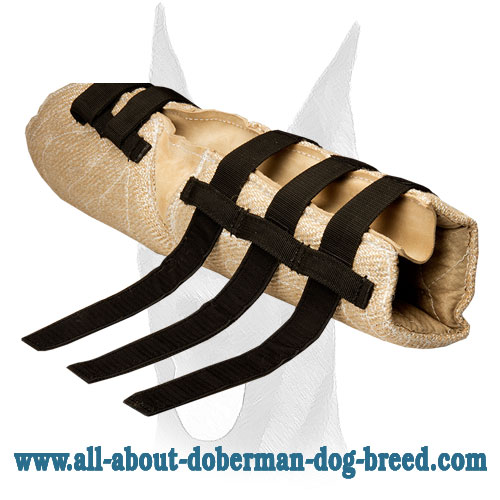 Doberman bite sleeve adjustable