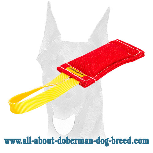 Pocket toy with a comfy handle for Doberman