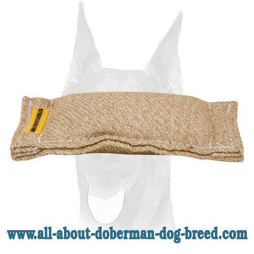 Doberman puppy pocket toy