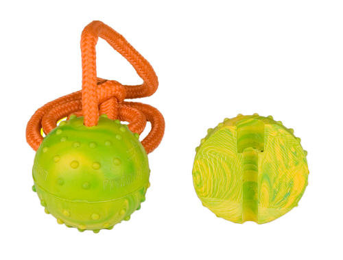 Rubber Doberman toy