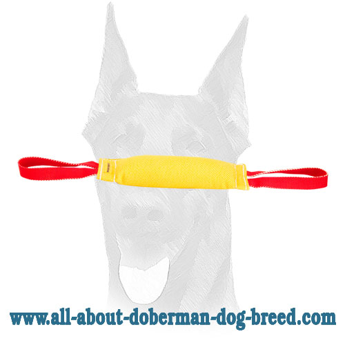 French Linen bite tug for Doberman